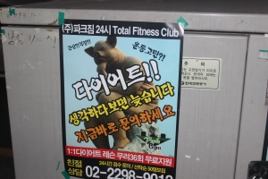Ad for a fitness club with a rather pensive pig as mascot.