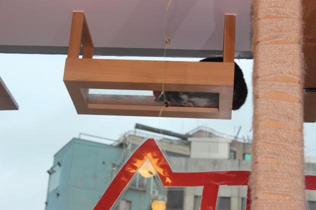 Special cat perch.